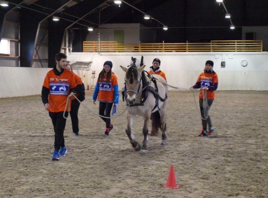 Elevene måtte sale på og av en hest som en del av konkurransen.