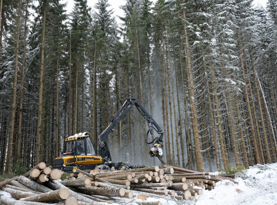 Tall fra Landbruksdirektoratet viser at skogeierne solgte 10,62 mill. kubikkmeter tømmer til skogindustrien i 2017.