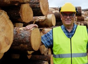 Skal sortere tømmer med røntgen