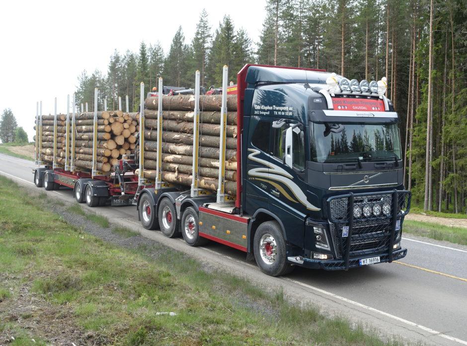 Tømmervogntog