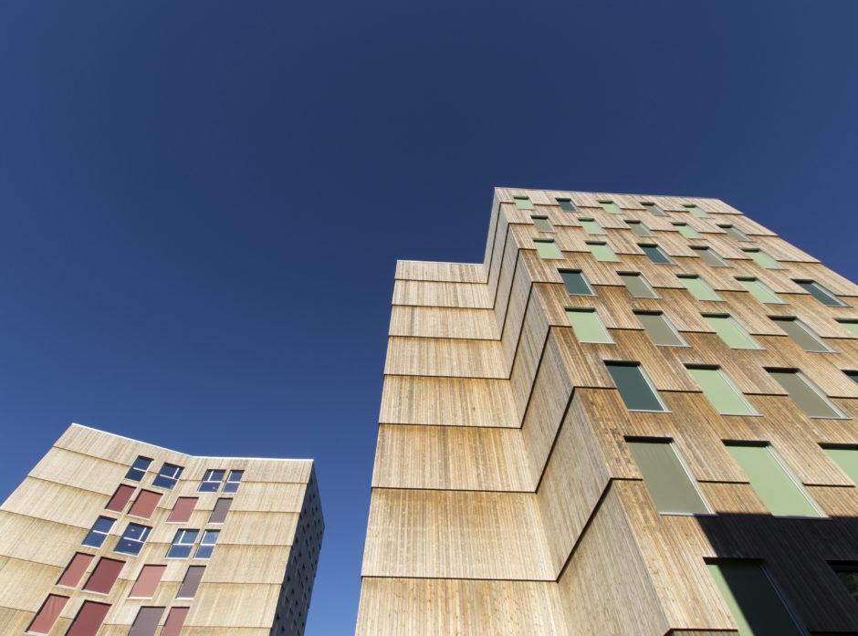 TENK TRE: Moholt studenby i Trondheim ble kåret til Årets trebyggeri i 2016. - Innovative byggeløsninger i tre kan være et viktig område for Shelterwood, sier Erlend Grøner Krogstad i Skogeierforbundet.