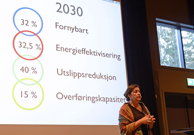 Anne Vera Skrivarhaug i NVE gjennomgikk målene for