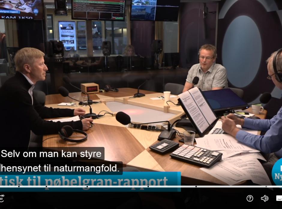 Per Skorge og Arnold Håpnes i debatt om fremmede treslag på Dagsnytt 18