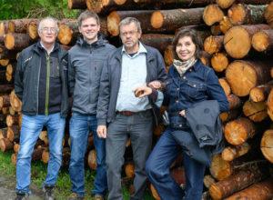 Ulovlig tømmerimport kan skade skogen