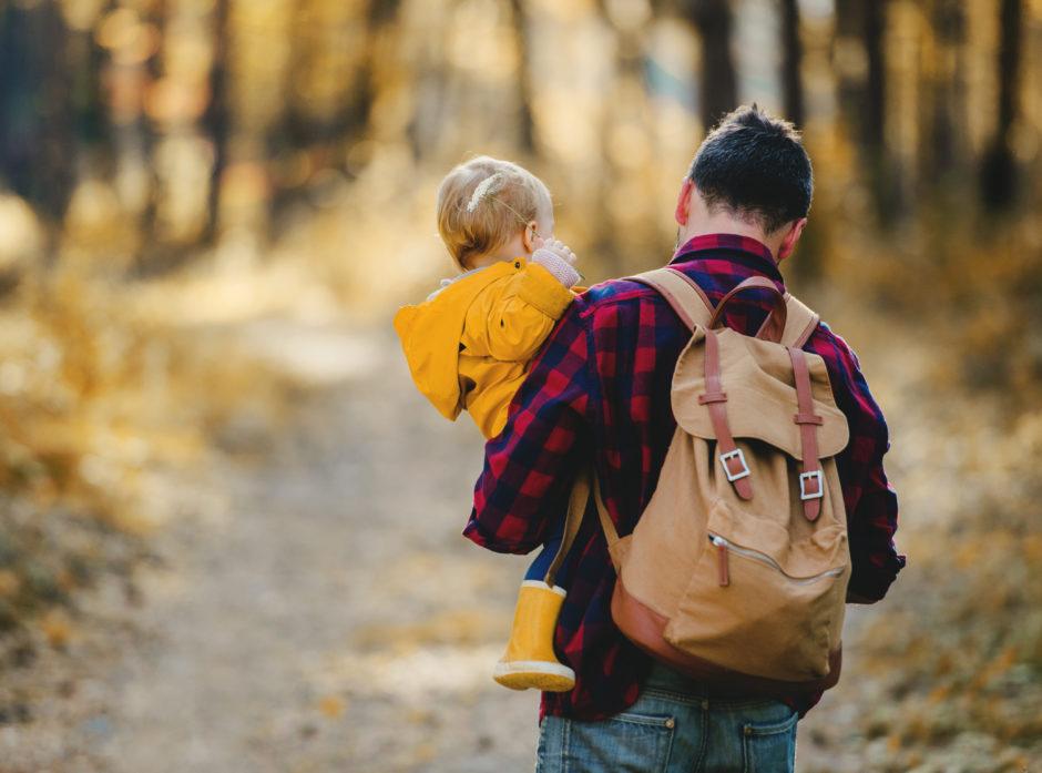 Man skal komme trygt hjem etter en endt arbeidsdag, forteller Norges Skogeierforbund. Foto: Colourbox