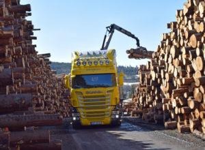 Skogeierorganisasjonene overtar ansvaret for Skogtiltaksfondet