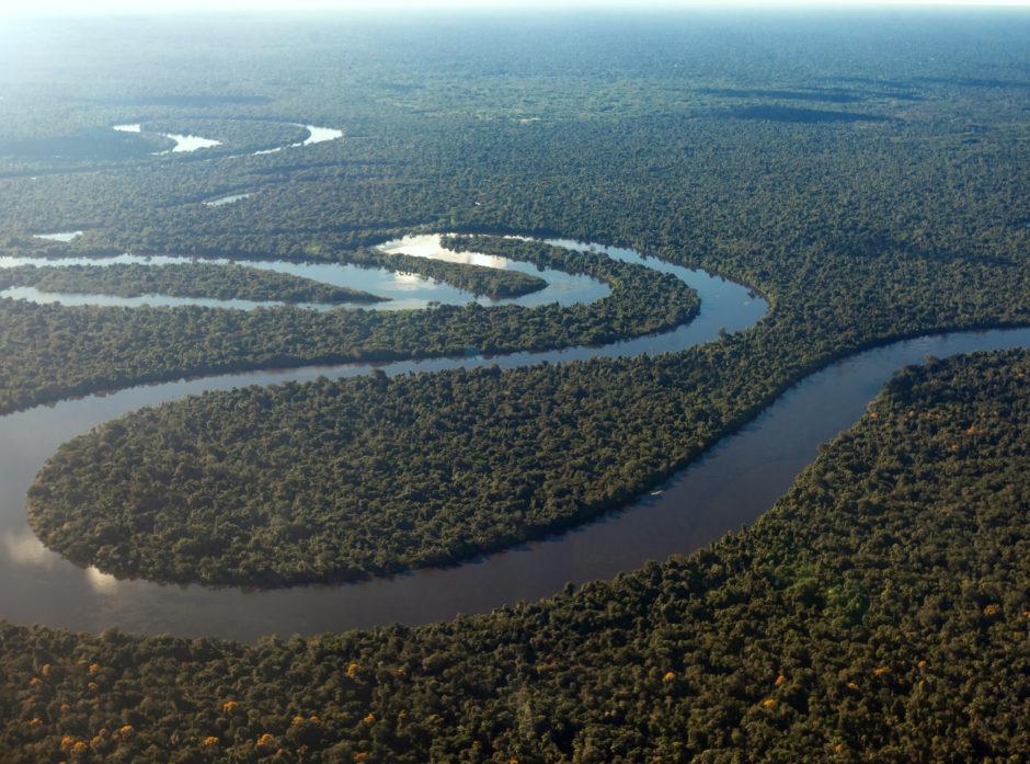 Amazonasregnskogen er verdens største regnskog og ligger i Sør-Amerika.