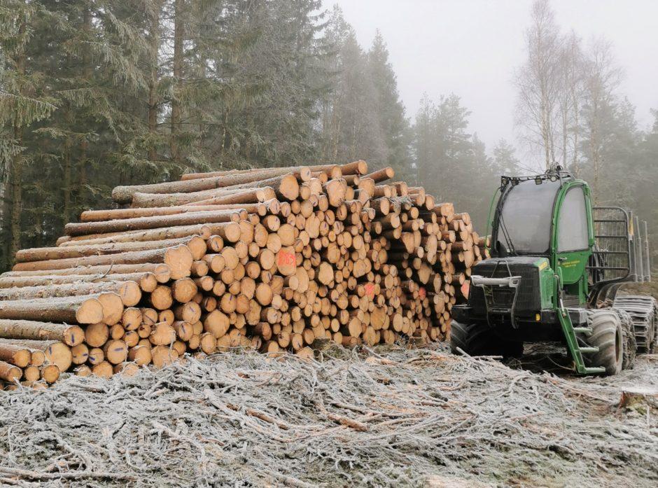 Samlet står vi for om lag 80 prosent av tømmeromsetningen i Norge og har betydelige eierandeler i norsk skogindustri.